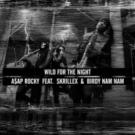 ASAP Rocky x A-Trak x araabMUZIK x Clark Kent – Long.Live.ASAP + Wild for the night (Live Video @ Letterman)