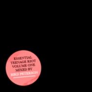 Bird Peterson – Teenage Riot Essentials vol. 1 + Knife Party – The Glove (Bird Peterson rmx) [FREEDOWNLOADS]
